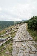Good flat rocks, crisscross timber to help prevent falling off cliff